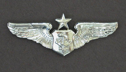 astronaut wings insignia - photo #20